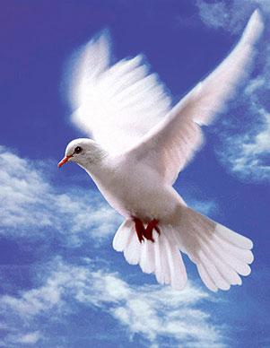 Святой Дух, для многих остается загадкой